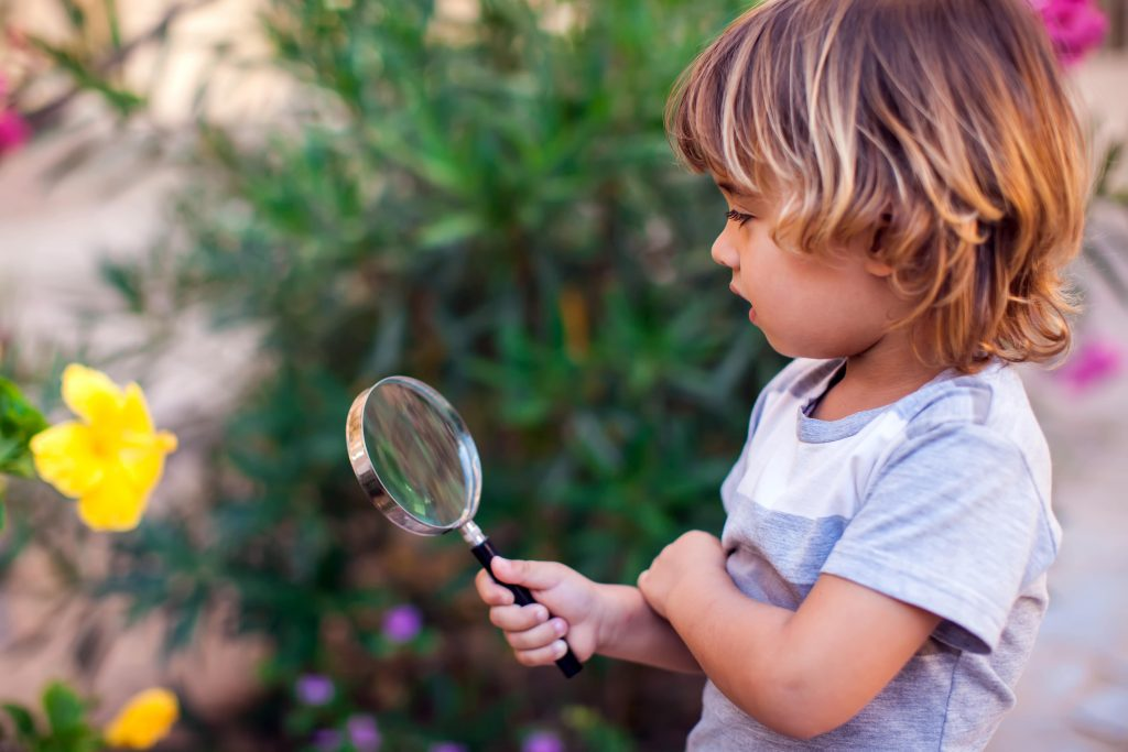 Why Curiosity Is The Most Important Skill To Teach Your Child