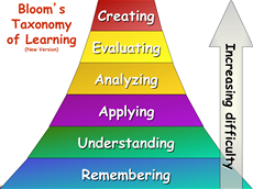 construction of knowledge in learning