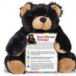 Longer Expert page HeartBear & HeartWarmer_440pxw_72