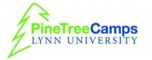 Pine tree camps
