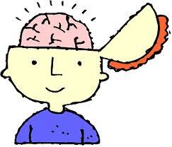Kid Brain